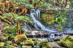 Horseshoe Falls @ Mt Field National Park (myshutterworld) Tags: park tree field landscape waterfall under smooth australia down falls mount national tasmania tall horseshow tassie hdr silky