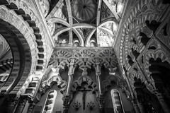 Of Shapes & Patterns (BoXed_FisH) Tags: travel blackandwhite bw monochrome architecture mono andaluca spain interior sony religion wideangle monotone mosque moorish cordoba mezquita es crdoba archtitecture sonyzeiss sonya7 sel1635z sony1635mmvariotessartfef4zaoss sonyzeiss1635f4oss