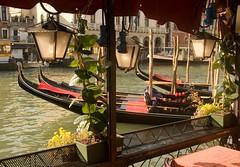 VENEZA (paulorogerio2) Tags: venice italy grandcanal gondolas