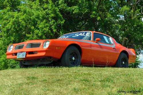 1976  Pontiac Firebird.  Monroe, Wisconsin.     DSC_7204[1]