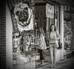 Streets of South Haven..... (Kevin Povenz) Tags: 2016 june kevinpovenz westmichigan michigan southhaven girl woman pretty cute streetphotography street blackandwhite bk canon7dmarkii canon50mm 50mm candid outside dog flag