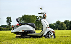 Scooter (Hindrik S) Tags: scooter brommer mobyl zadel saddle spegel mirror spiegel land weide greide motor bike stilllife green groen grien grass gras gers weiland meadow pasture sonyphotographing sony sonyalpha tamron tamronaf16300mmf3563dillvcpzdmacrob016 16300 a57 57 slta57 2016 kh kh2018