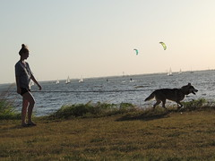At the Lake (ptcruiser4dogs) Tags: kiteboarding windsurfing sailing boats lake atl 405 okc watersports fun water h2o lakehefner