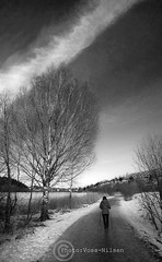 Nordic_walking (Voss-Nilsen) Tags: travel trees winter sky people bw white snow black tree nature water oslo norway canon landscape geotagged photography norge photo vinter europa europe natur norden himmel tur nordic scandinavia trim vann himmelen skyer sn trening sne landskap trr monocrome svart stlandet geografi skandinavia hverdagsliv naturen hvitt geotagget svarthvitt stensj mennesker vidvinkel digitalfoto stensjvannet reisebilder stavgang stkanten norgenorway europaeurope oslooslo oslobilder turging reiseliv turvei geografiogreiselivtravel nordenthenordiccountries skandinaviascandinavia hydebilder vossnilsen