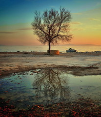 NICE DAY (Damir B.) Tags: sunset sea reflection tree water boat croatia more split adriatic hrvatska jadran dalmatia dalmacija refleksija jeinac bestcapturesaoi thepinnaclehof kanchenjungachallengewinner elitegalleryaoi mygearandme mygearandmepremium mygearandmebronze mygearandmesilver mygearandmegold mygearandmeplatinum mygearandmediamond gear02 recreation03 tphofweek170