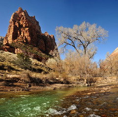 One of the three patriarchs and river zion national park resized (houstonryan) Tags: life park green art home water river print photography one three photo blood photographer desert ryan houston national photograph below zion redrock decor photostitch photostitched patriarchs houstonryan
