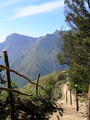Top Station Trail (maewest13) Tags: india munnar topstation