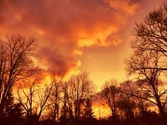 Sunset-3-5-12 (Chris Sorge) Tags: sunset canada mygearandme rememberthatmomentlevel1 rememberthatmomentlevel2 rememberthatmomentlevel3 me2youphotographylevel2 me2youphotographylevel3 me2youphotographylevel1