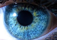 Macro Eyeball (heatspine) Tags: macro eye canon fineart ethereal artisticphotography humaneye unconventional macroeyeball macroeyephotography heatspine humaneyephotography heatspinephotography canon5dmarkiicanonphotographycanonphotosoriginalphotographybestofflickrbestphotographyrawmostinterestingnevergrowupvintagefunphotos abstractphotographyinterestingphotography