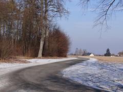 just another perfect day in Hesse (JoannaRB2009) Tags: road blue trees winter sky snow nature germany alley path natura avenue zima niebieski droga aleja śnieg hesse przyroda niebo drzewa niemcy calden ścieżka wilhelmsthal kalden hesja flickrstruereflection1
