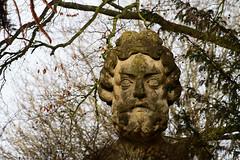 Statue head in the Great Dell. (smir_001) Tags: park winter england sculpture art history statue garden bath head great victoria dell february