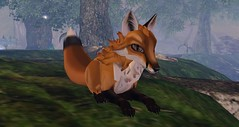 Floofy Fox (Laila.Lorakeet) Tags: avatar secondlife fox feral tokushi