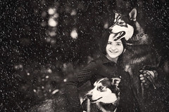 Wrong Era (miss_n_arrow) Tags: dog snow love dogs girl husky huskies relationship yukon bond sled paxson alaskan
