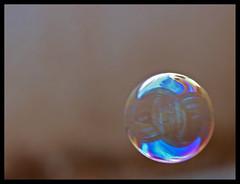 Forever Blowing Bubbles (isaac.keown) Tags: isaac bubbles blowing east saudi arabia bubble forever middle riyadh keown