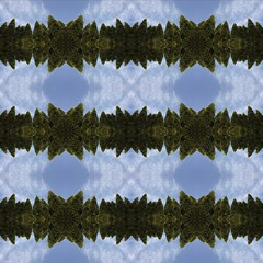 Green Stars & Blue Curcles (~Wisteria~) Tags: blue trees sky abstract green canon stars pattern gimp curcles