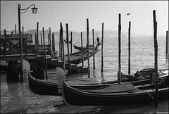 Gondola! (C. Abe) Tags: 3200 venedig