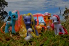 Pony Picnic v2 [outtake] (pukunui81) Tags: newzealand umbrella canon picnic g4 pegasus auckland pony skytower unicorn hasbro mylittlepony mtalbert 550d fluttershy t2i lilyblossom earthpony plumsweet canoneos550d friendshipismagic dewdropdazzle
