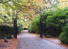Gate To Nowhere (Stephen Whittaker) Tags: park autumn trees architecture liverpool nikon iron gates path victorian wrought calderstones d5100 whitto27