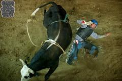 Corey Rickard - Clovis Rodeo (MattCohenPhoto.com) Tags: cowboy western rodeo