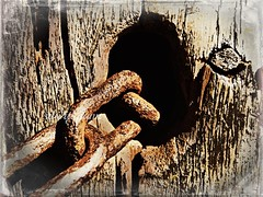 """O seguro morreu de velho!"" (dito popular) / ""Better safe than sorry!"" (proverb) (silwittmann) Tags: wood iron decay metallic rusty chain texturas rustyandcrusty"