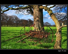 The Hay Rake. (Picture post.) Tags: trees sunlight green nature clouds landscape interestingness shadows bluesky fields paysage arbre soe springtime farmmachinery hayrake photographyrocks diamondclassphotographer flickrdiamond mygearandme mygearandmepremium mygearandmebronze mygearandmesilver mygearandmegold