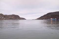 View from Harbourside Park, St John's Newfoundland and Labrador (internat) Tags: canada stjohns nl rdf hdr signalhill thenarrows 2016 newfoundlandandlabrador