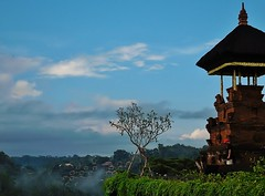 mist in the valley (SM Tham) Tags: sky bali plants mist building tree clouds indonesia island hotel asia landscaping belltower resort frangipani creepers ubud landscapearchitecture mandapa kulkul ayungvalley