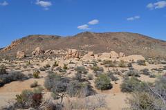 Desert Views - Joshua Tree National Park (Neal D) Tags: california rocks desert rockformations twentyninepalms joshuatreenationalpark