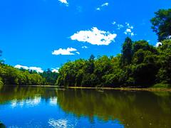 DSCN0638 (vhenryz) Tags: park trip trees sky cloud reflection nature water clouds forest river reserve calm national mangrove jungle brunei ulu temburong