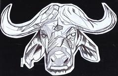 toro a lapicero (ivanutrera) Tags: animal pen sketch drawing sketching draw dibujo toro ilustracion lapicero boligrafo dibujoalapicero dibujoenboligrafo