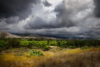 Michoacán Skies