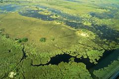 15-09-20 Ruta Okavango Botswana (109) R01 (Nikobo3) Tags: travel parque paisajes naturaleza color canon ngc delta unesco viajes botswana okavango vuelo twop frica vidasalvaje g7x omot deltadelokavango flickrtravelaward canong7x nikobo josgarcacobo todosloscomentarios
