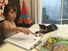 (muscolinos) Tags: lucy homework gatto agata doha scuola