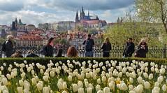 "Prague: The golden city of one hundred spires"" (Christian_from_Berlin) Tags: vacation castle europe prague prag unescoworldheritagesite czechrepublic praguecastle"