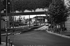 Milano (David Ripamonti) Tags: street city urban bw white black milan color tower dark photography strada milano centro tram bn piazza garibaldi bianco nero verticale città bosco unicredit melchiorregioia gaeaulenti boscoverticale