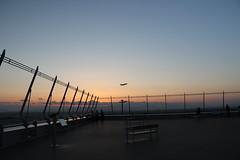 Skydeck (yukky89_yamashita) Tags: japan airport deck observatory 愛知 centrair 中部国際空港 常滑