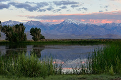 Owens valley sunrise (Marc Briggs) Tags: lake pond sierra dsc40121aw