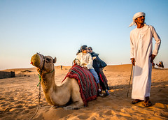 The Shepherd (ferdymac) Tags: travel dubai desert camel travelphotographer