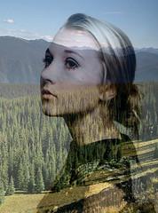 Revel (Stevie Rae) Tags: trees art girl forest photoshop landscape image horizon double layer seethrough girlinbackground landscapeinbackground