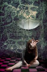 growing up (dianne_smith) Tags: wallpaper portrait selfportrait rabbit bunny water rain fairytale umbrella vintage blood upsidedown alice surreal smith creepy diane fantasy dreamy dianne wonderland nonsense growingup fairytales aliceinwonderland darl maturity bunnymask rabbitmask diannesmith dianesmith girlintowoman transiition checkarboard