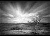 Beacon Hill......... (Digital Diary........) Tags: longexposure blackandwhite bw landscape movement le weldingglass