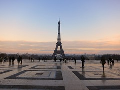 Eiffel tower view