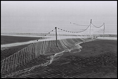 °drift net (alessandro bonetto) Tags: blackandwhite bw film beach rollei analog 35mm canon vintage 50mm analogphotography bibione biancoenero pellicola canoneos620 canonef5018ii fisching driftnet analogicait rolleirpx100