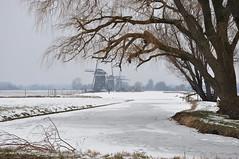 Wilsveen in wintertime (oxipang) Tags: snow cold holland ice dutch landscape sneeuw skating windmills ijs schaatsen molens oxipang