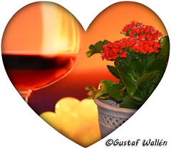 Happy Valentine's Day! (gustaf wallen) Tags: happyvalentinesday