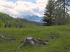 Latemar (Forest (GKweb.it)) Tags: mountain mountains montagne canon montagna rosengarten sx20 catinaccio welschnofen enfuse novalevante exposurefusion imagefuser canonsx20is canonsx20