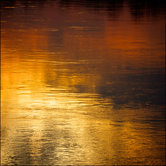 happy birthday, B1! ;-) (rita vita finzi) Tags: light nature water reflections river gold waves warmth brilliance goldleaf wavelet winner500