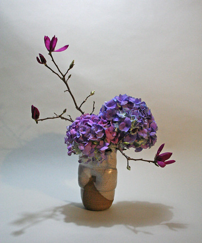 Nagiere with hydrangeas and tulip magnolia