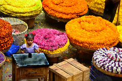 Flower Girl (anindya55) Tags: portrait children nikon bangalore getty flowermarket gettyimages tamronaf70300mmf456dildmacro chickpete d5100