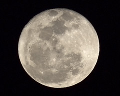 Full Moon - March 8, 2012 [EXPLORED] (x-ray tech) Tags: california light sky moon night dark interesting flickr glow view bright image sandiego space iii scene basin full explore crater valley impact sight lunar chulavista 300l interingness ef300mmf4lis canoneos60d